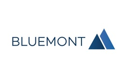 Bluemont Consulting GmbH