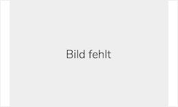 Handelsblatt Industriegipfel
