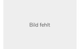 VDI Württembergischer Ingenieurverein e.V.