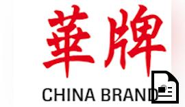 E-Mobilität:  Die chinesischen Autobauer  melden immer mehr Patente an