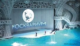 Klimatisierung fürs Delfinarium mit RadiPac - Radialventilatoren