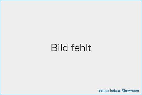Der #induuxTreff: Der Austausch für induux Nutzer