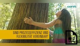 Ready-to-Grow: Prozesseffizienz und Flexibilität dank der SAP PLM Foundation von Cenit
