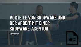 Die Vorteile von Shopware 6 und der Arbeit mit einer Shopware-Agentur