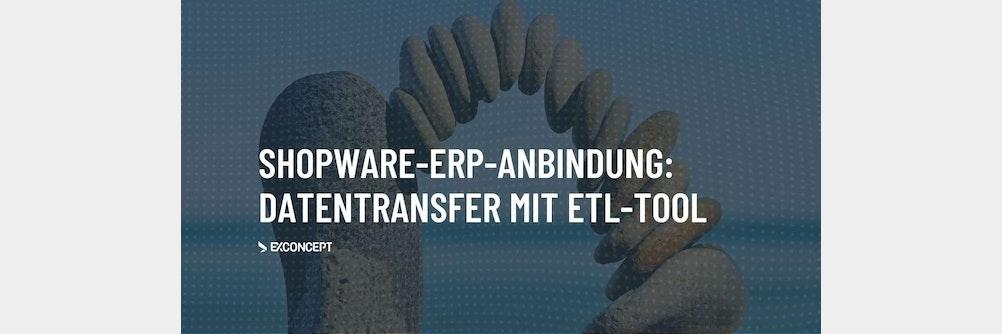 Der Prozess des Datenaustausches am Beispiel einer Shopware ERP-Anbindung