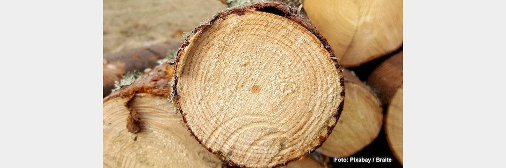 Darum spielen Holzpellets im Explosionsschutz eine Rolle