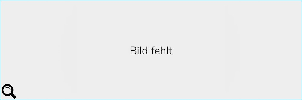 Bosch Global Supplier Award an Balluff