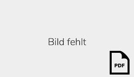 Flyer: Der RÖHMSTER-HASE kommt ...