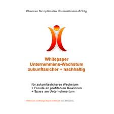 Whitepaper Unternehmens-Strategie mit Aktionsplan