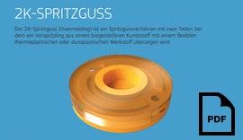 Protolabs 2K-Spritzguss