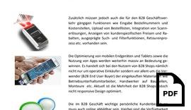Eine 360 Grad E-Commerce Lösung für die nächste Generation B2B
