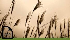 SUCO Druckschalter in der Agrartechnik