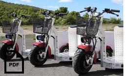 858.pdf e-mobility