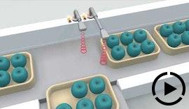 pms Ultraschallsensoren im Hygienic Design