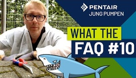 What The FAQ 10: Kanalhaie – Wie schütze ich mich davor