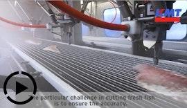 Valka - Hersteller von Maschinen zur Fischverarbeitung - Wasserstrahlschneiden von Fisch